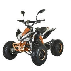 Квадроцикл подростковый бензиновый MOTAX ATV T-Rex Super LUX 125 сс  (гидравлические тормоза, пульт контроля, до 65 км/ч)